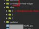 WP-Uploads